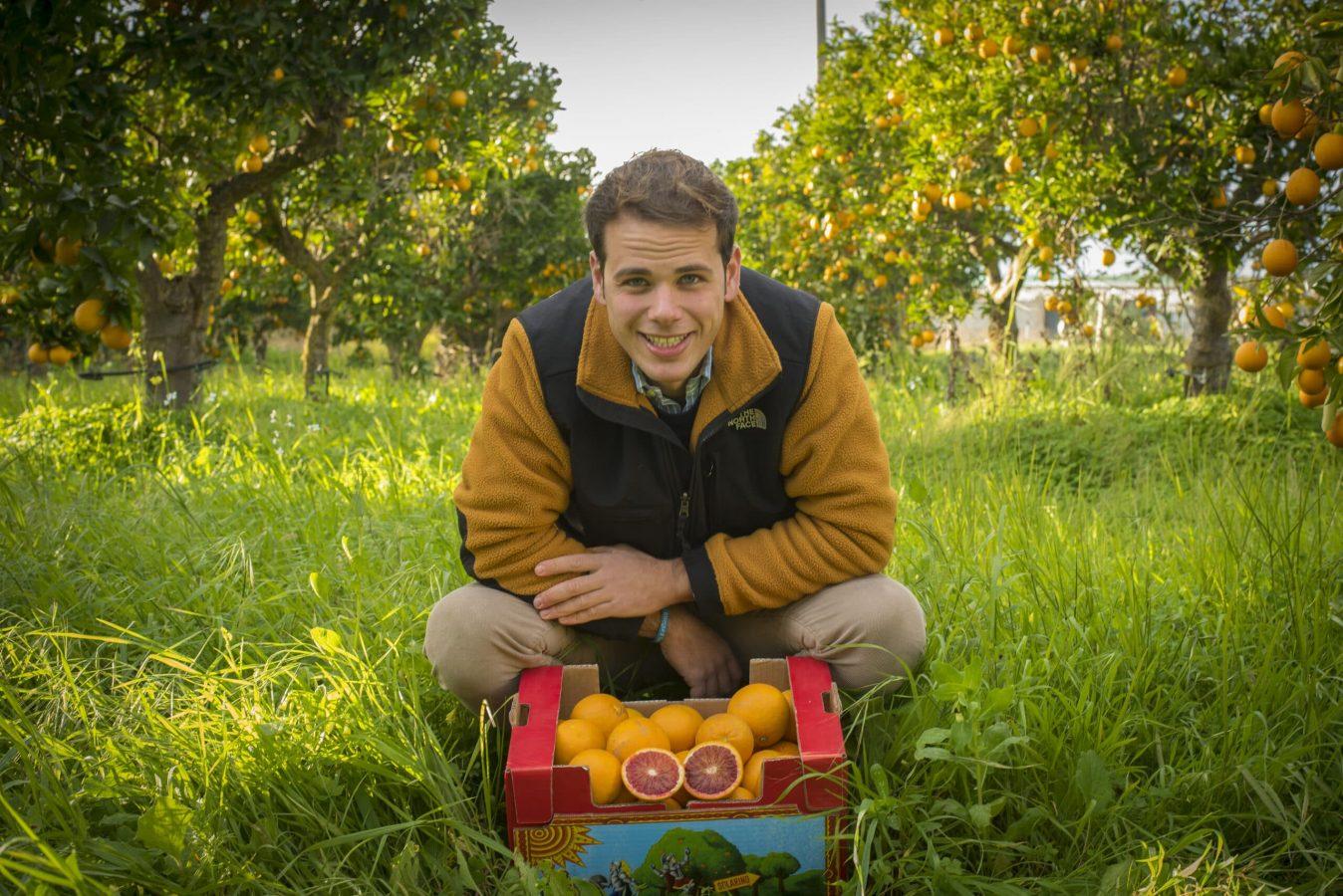 arance e agrumi siciliani